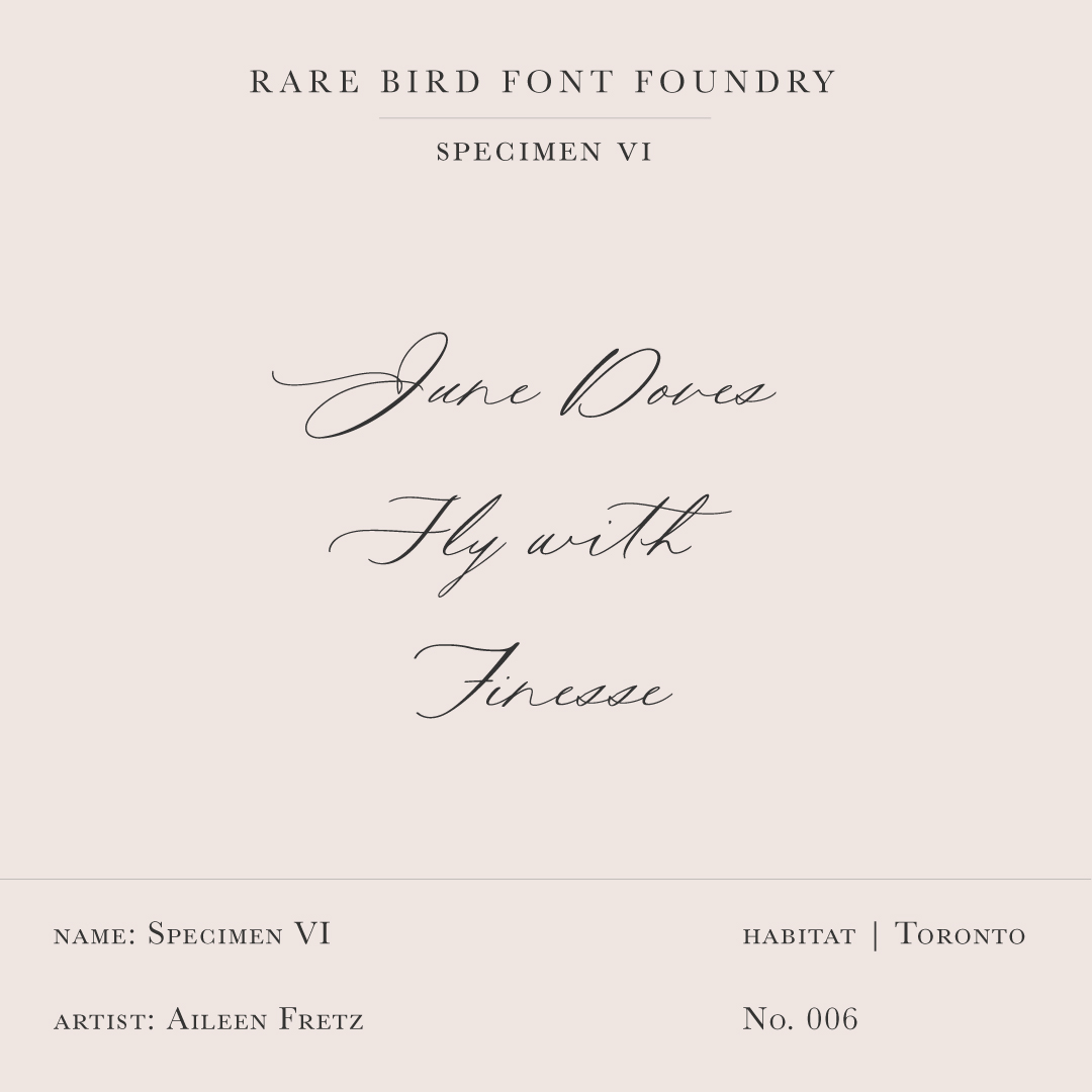 RARE BIRD SPECIMEN VI LABEL