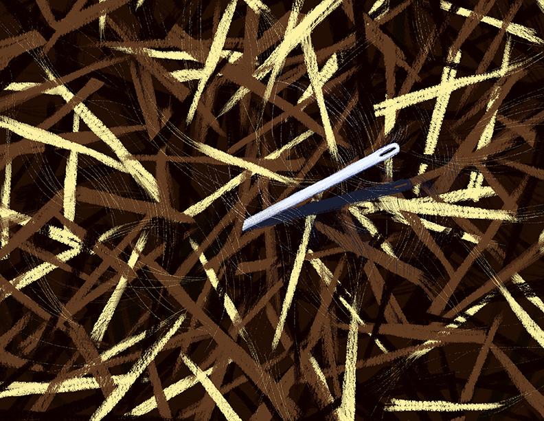 needle in a haystack-1.jpg