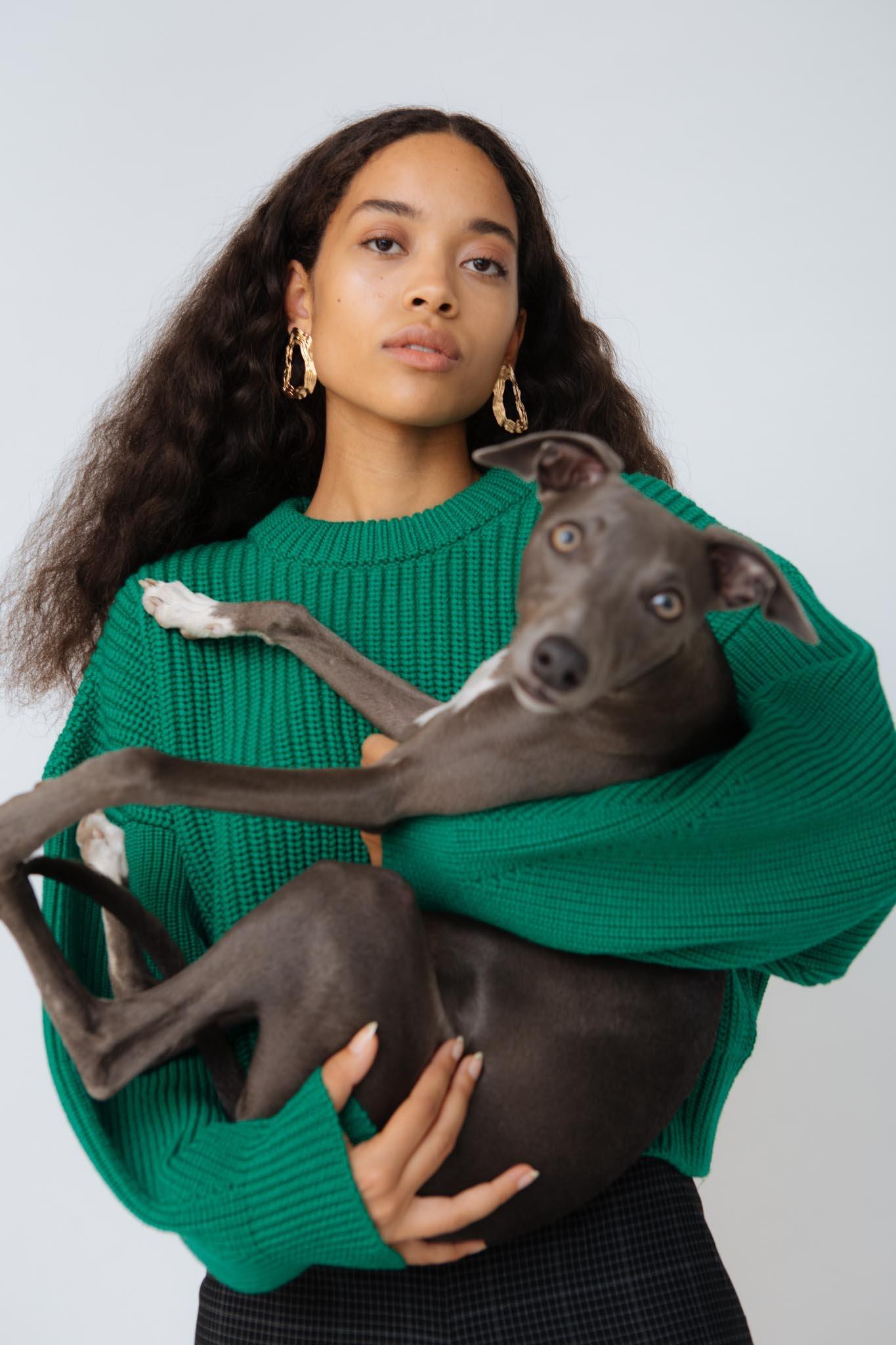 Hund Hund  -  39€ -  299€