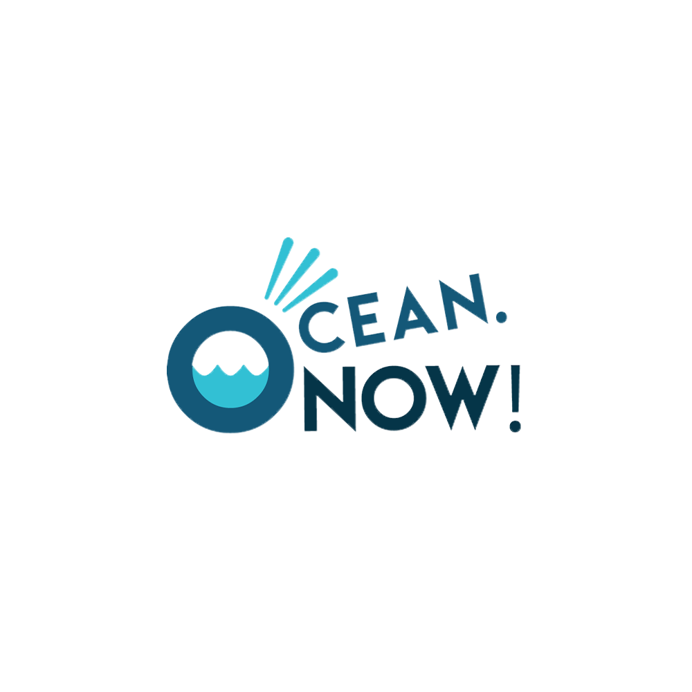 "Ocean_Now_Logo_colour_rgb.png."">                  </noscript><img class="