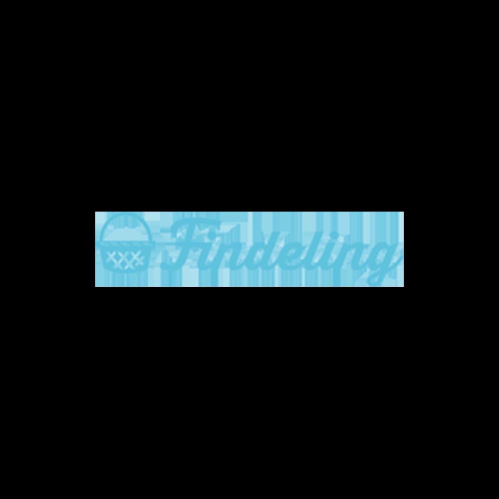 "findeling-logo.png."">                  </noscript><img class="
