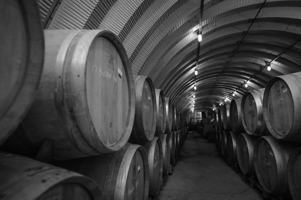 Malivoire Winery - Radical Road Rimmi (12).jpg