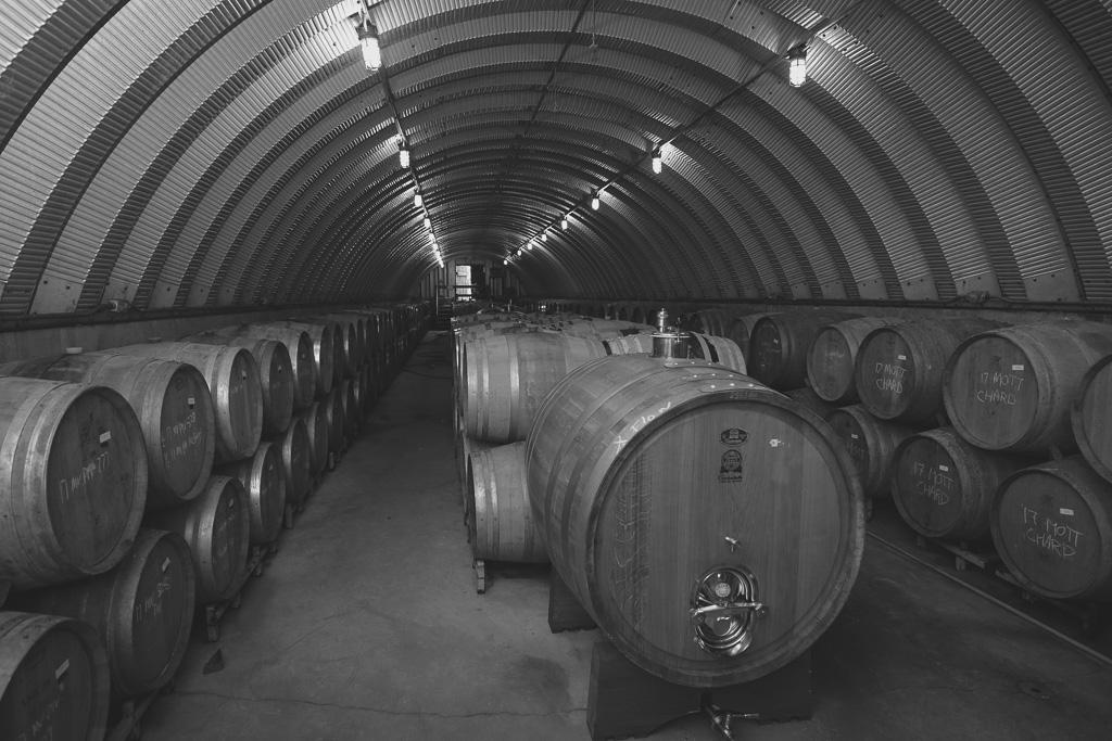 Malivoire Winery - Radical Road Rimmi (15).jpg
