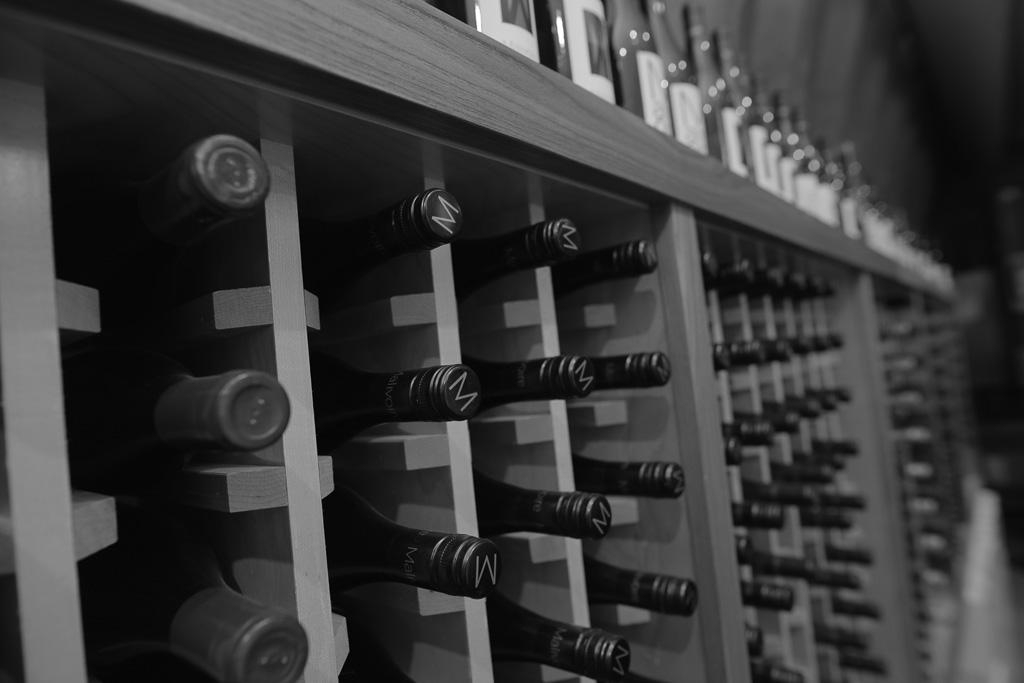 Malivoire Winery - Radical Road Rimmi (35).jpg