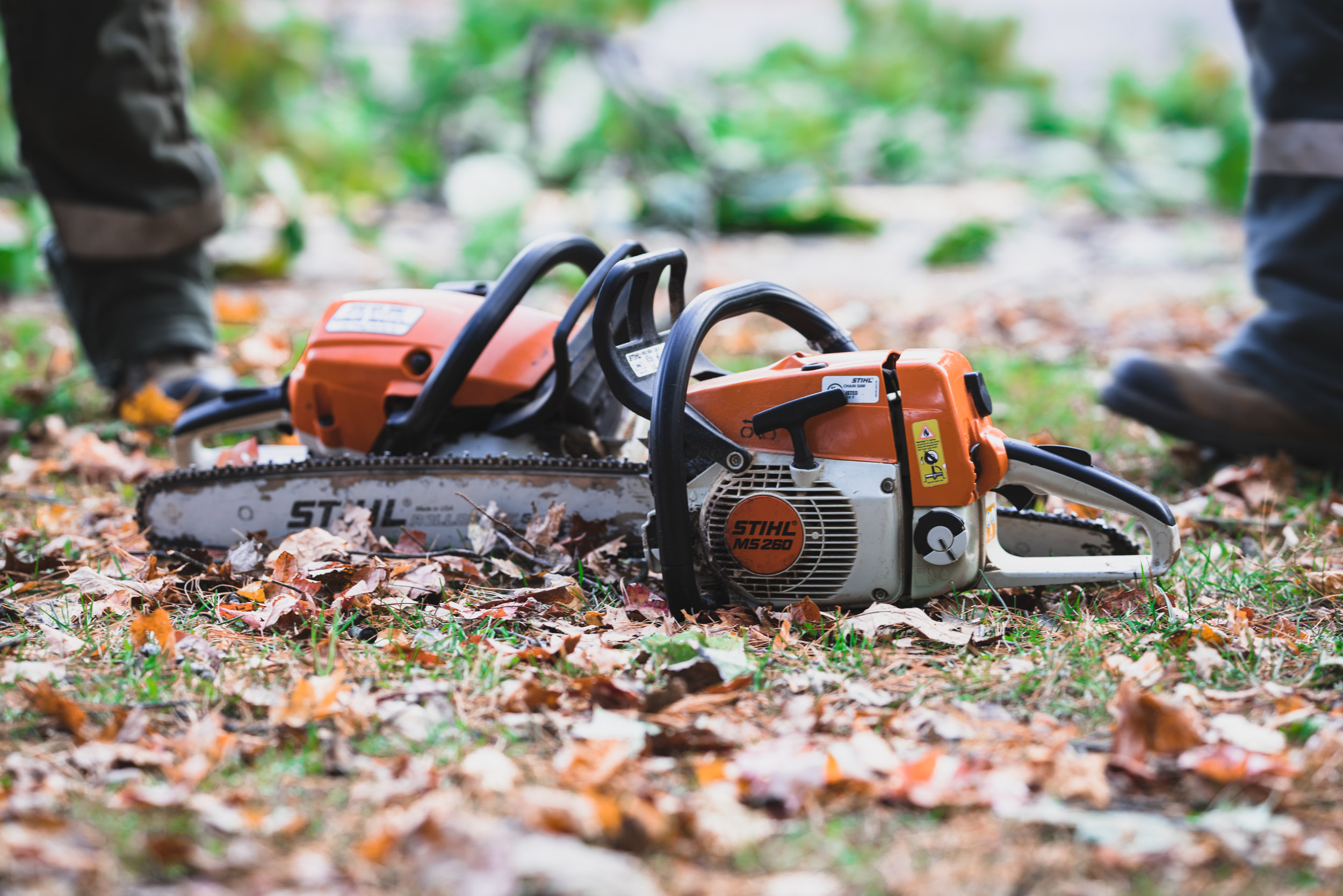 Rockwood Tree Services Shoot 2 (2).jpg