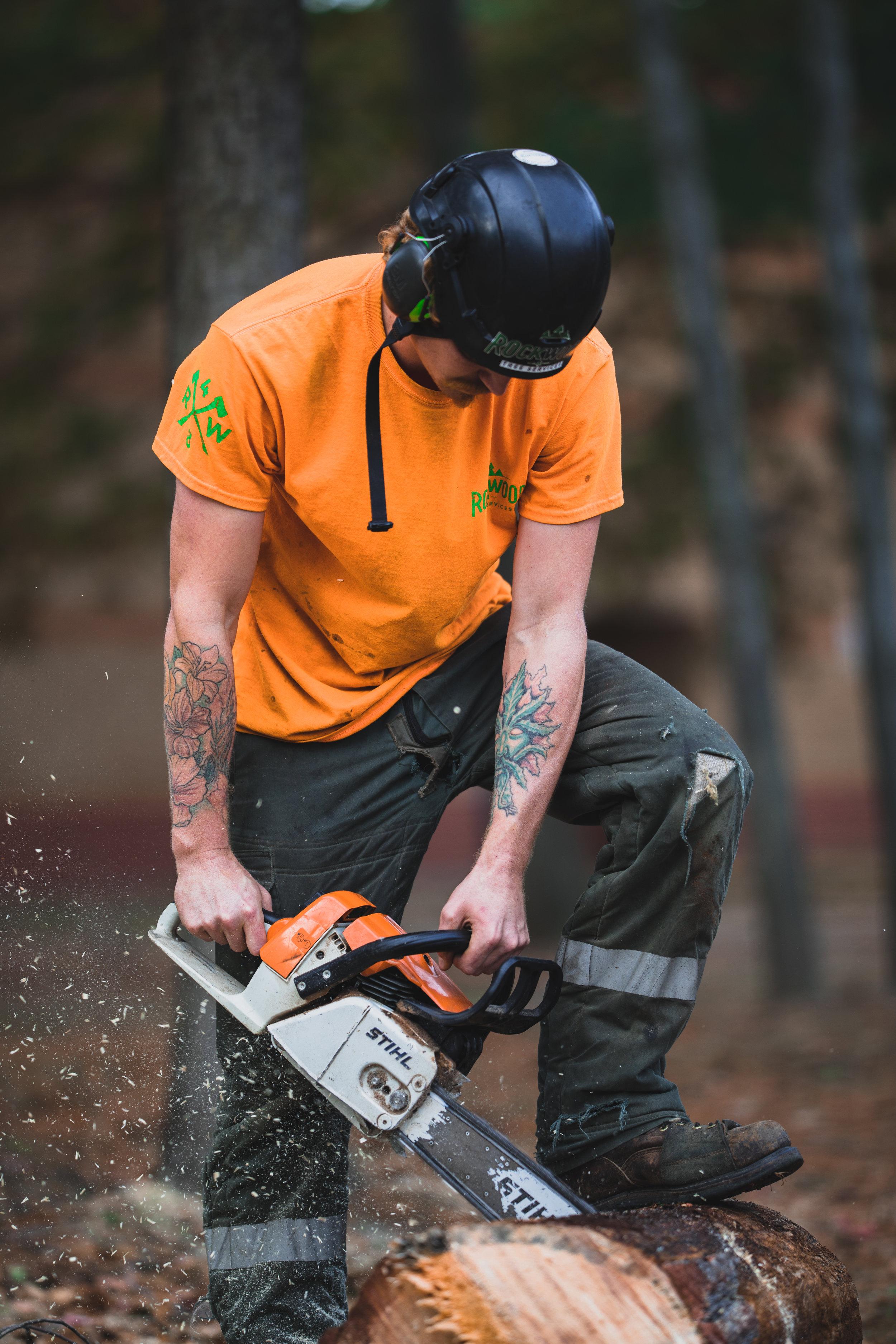 Rockwood Tree Services Shoot 2 (21).jpg