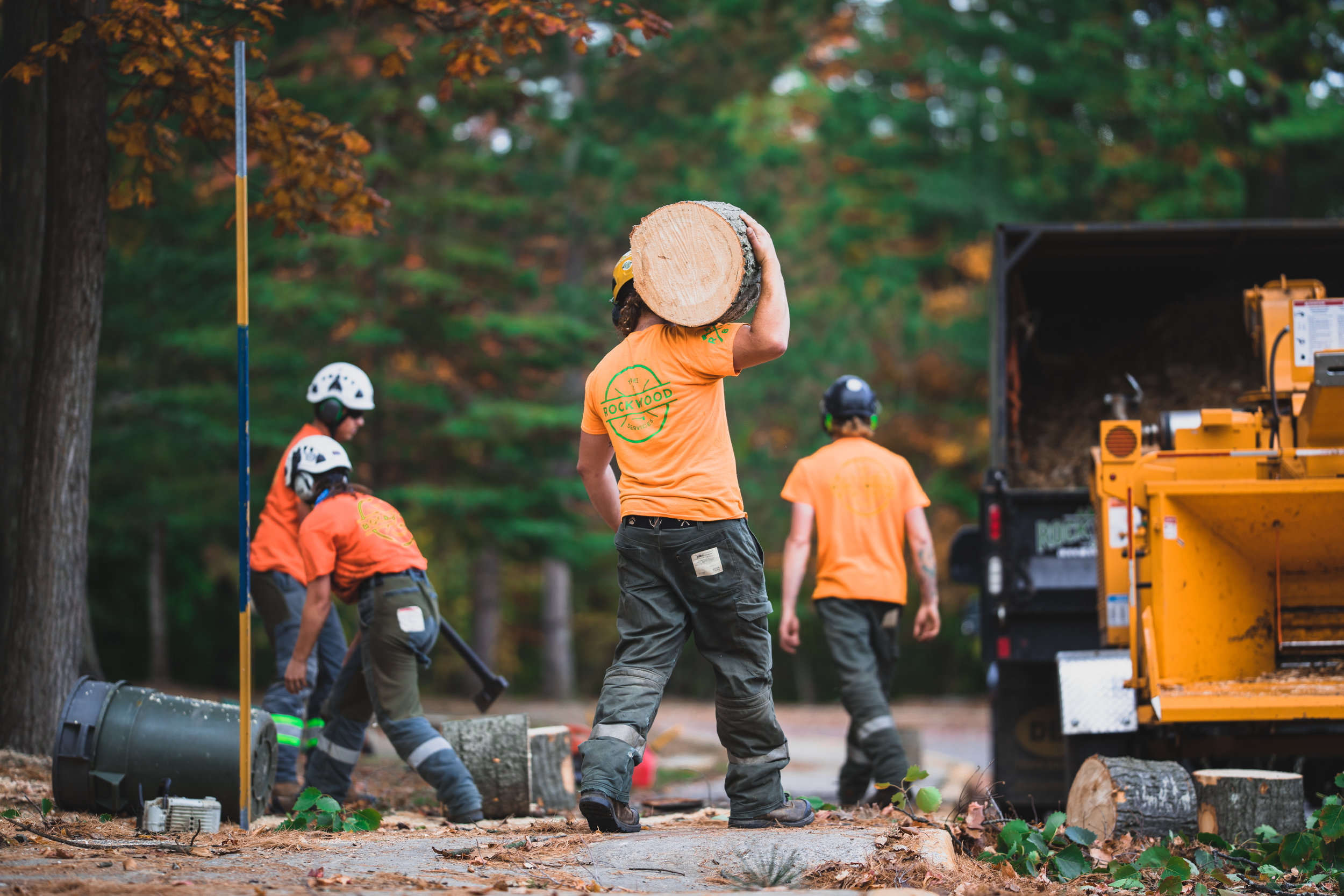 Rockwood Tree Services Shoot 2 (27).jpg