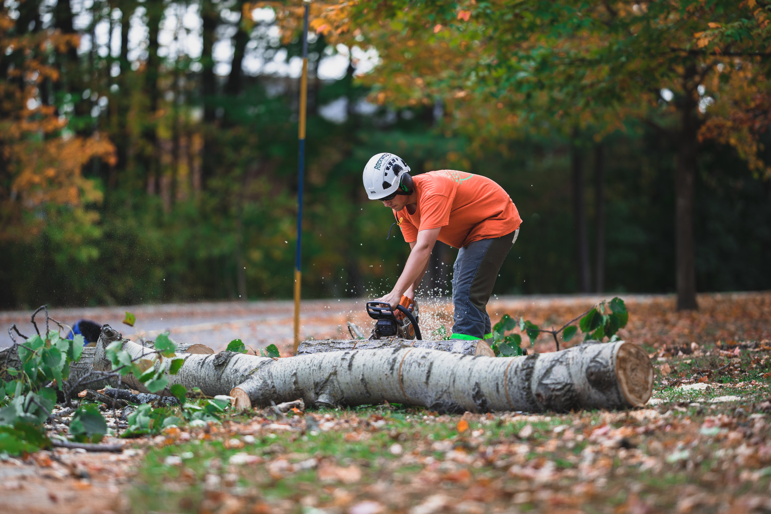 Rockwood Tree Services Shoot 2 (32).jpg