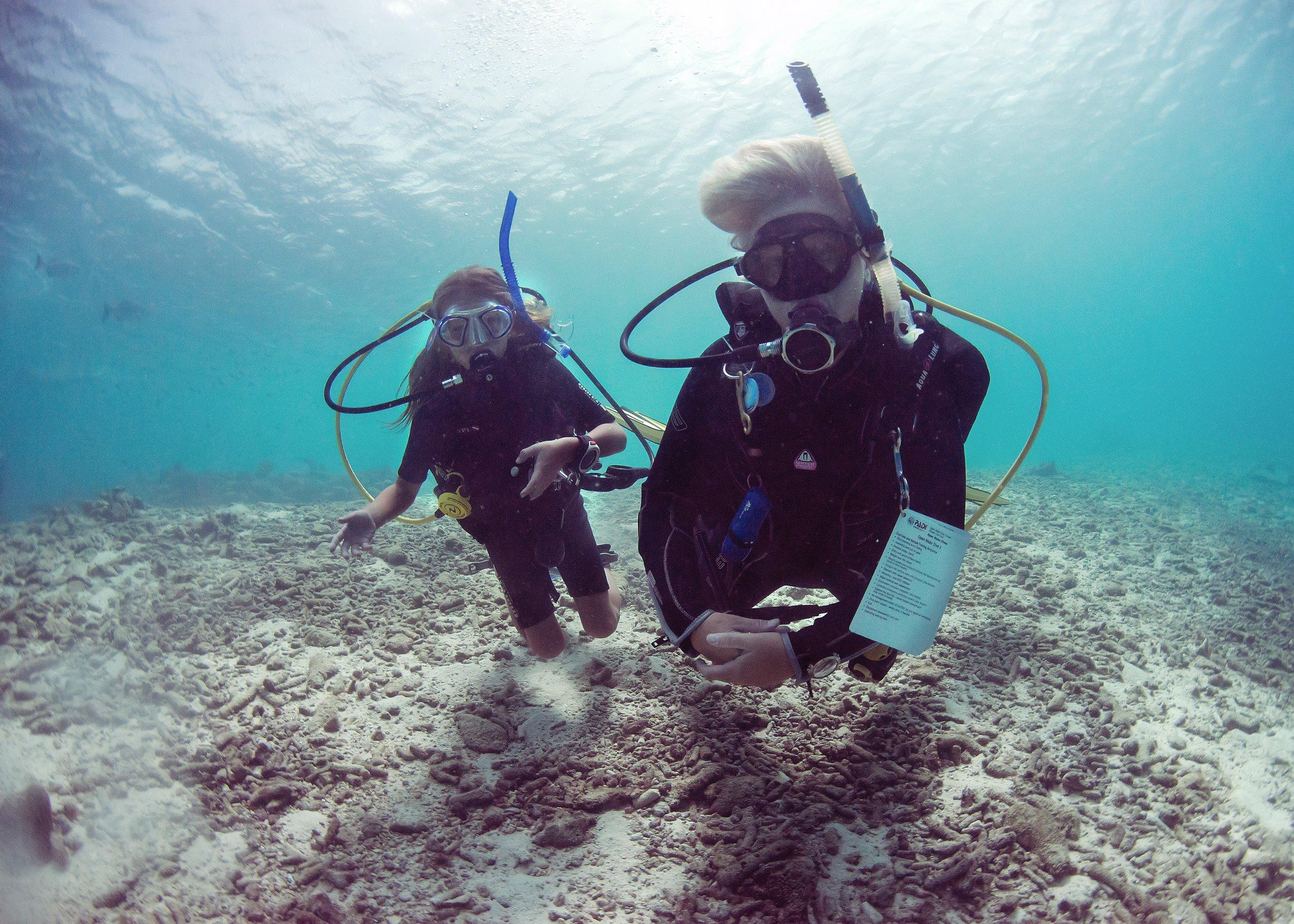 Bonaire VITB Underwater Images DSC_8514.jpg.jpeg