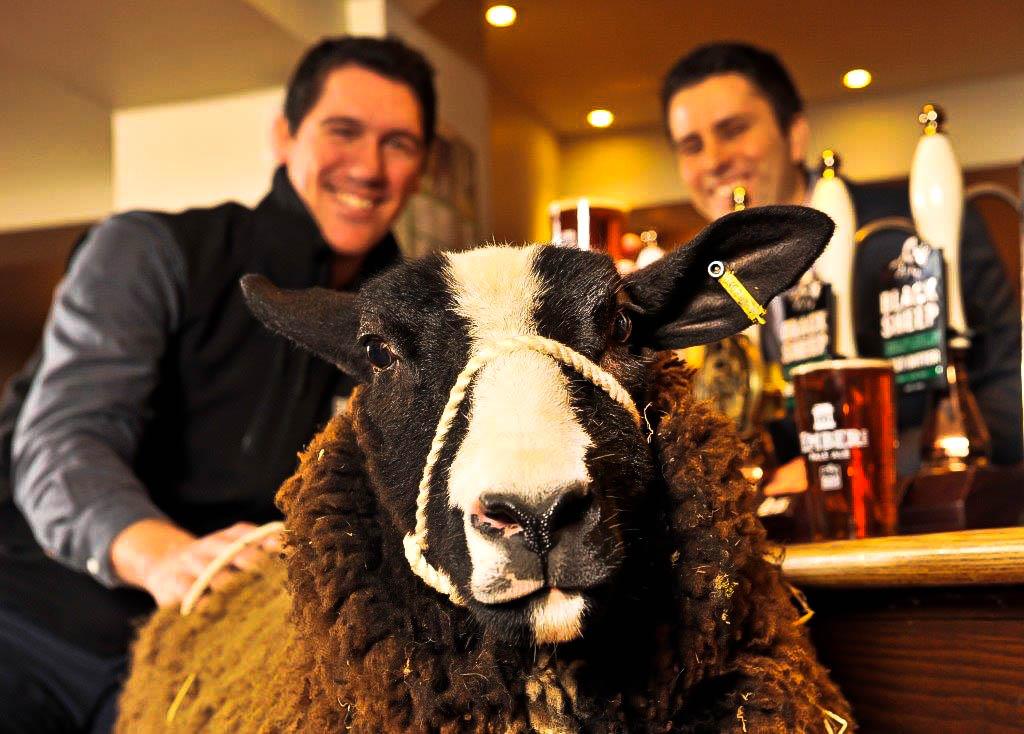 Black Sheep Brewery updated.jpg