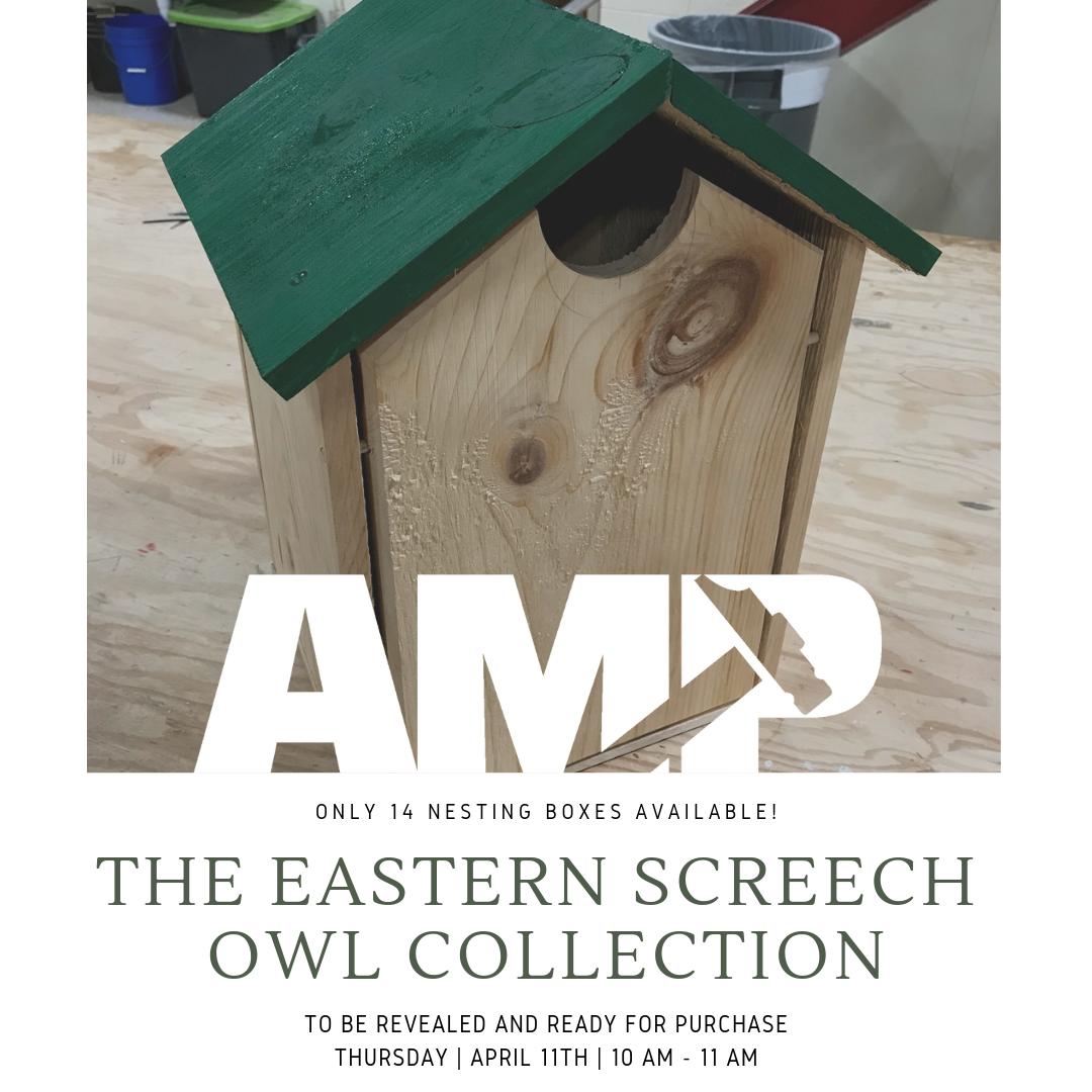 Eastern Screech Owl Instagram Post (1).png