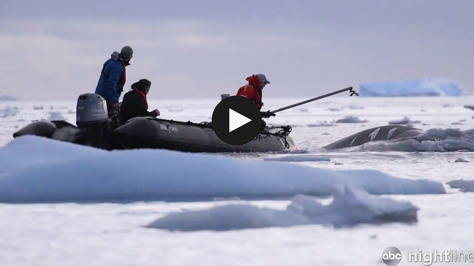COA scientists featured on abc Nightline - COA researchers brave brutal conditions to research climate change in Antarctica: Part 1