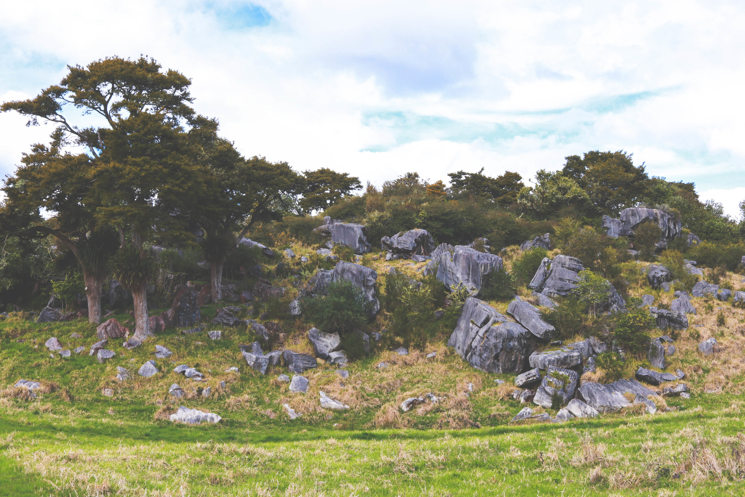 Rockman trail, off SH 1 leaving Auckland