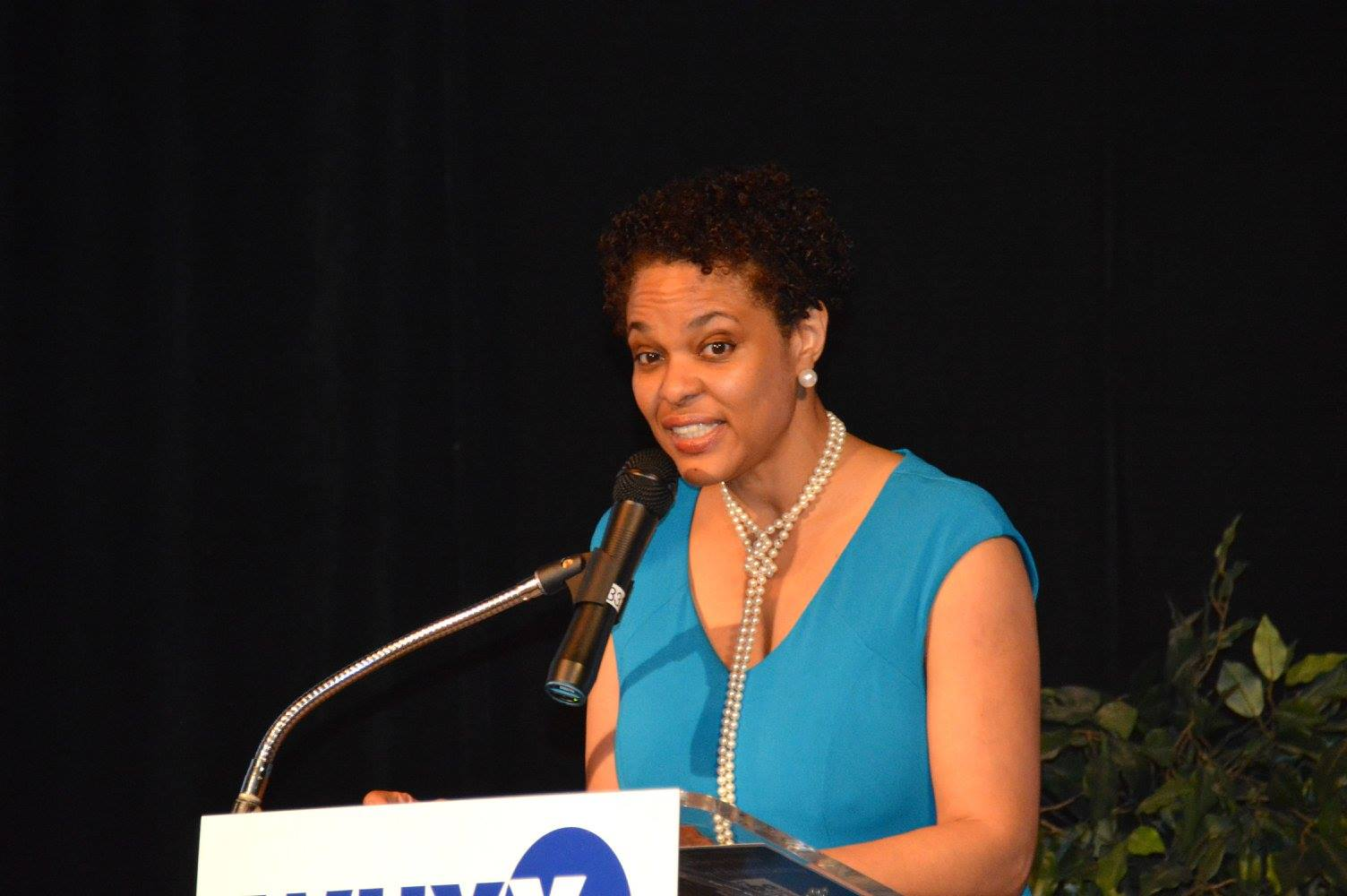 Pamela Rich-Wheeler    Mrs. Rich-Wheeler, a founding member of PBAN, is the Executive Director of the The Business Center in Philadelphia, Pennsylvania. The Business Center serves emerging small businesses in Philadelphia.  Mrs. Rich-Wheeler is a two-time Pitt graduate.