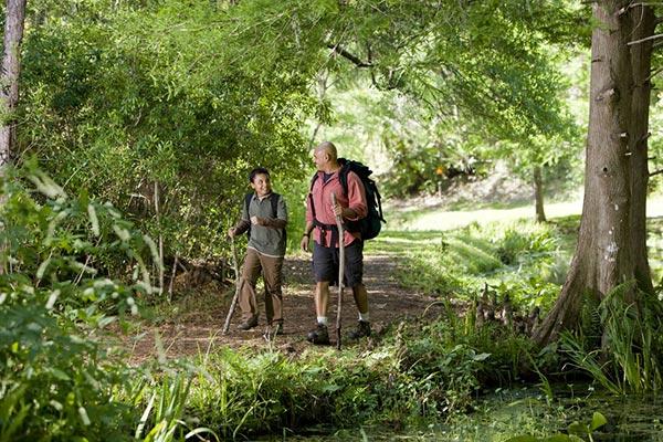 Hiking Trails in Abundance