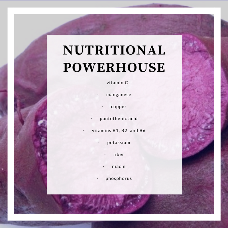 Nutritional powerhouse-1.png