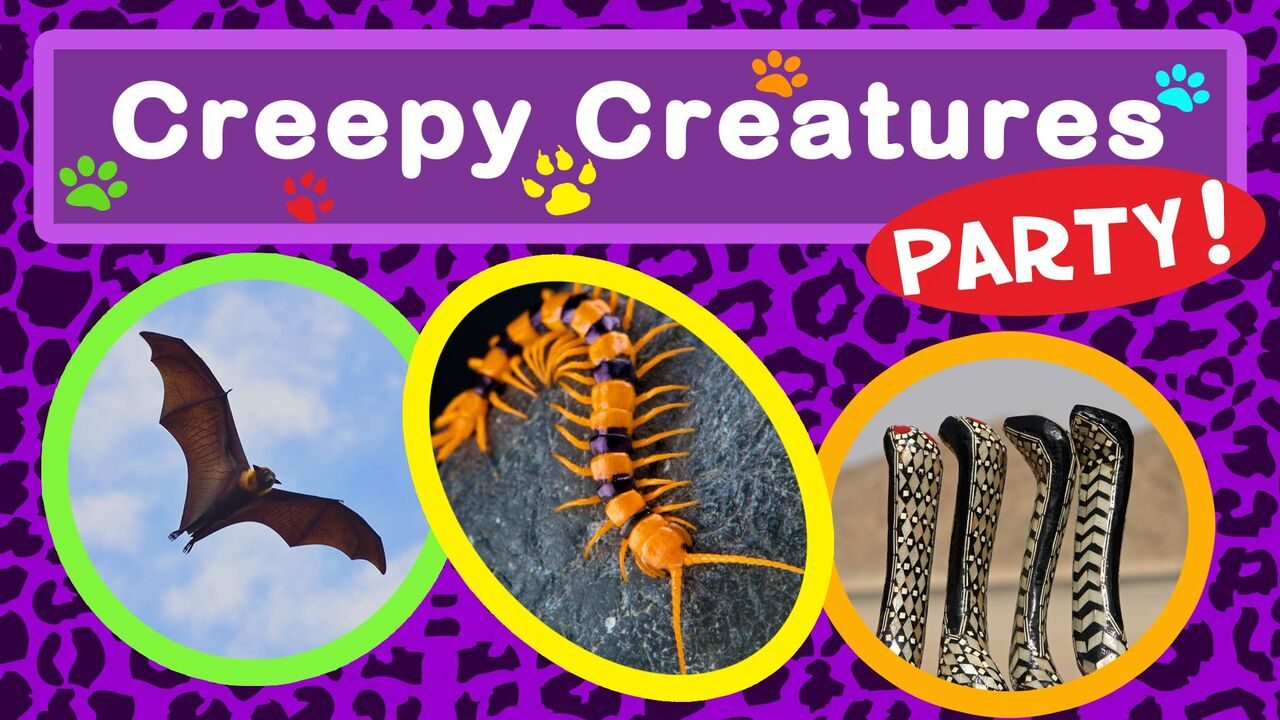 Creepy Creatures Party -