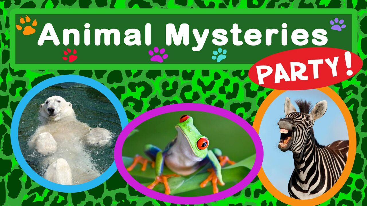 Animal Mysteries Party -