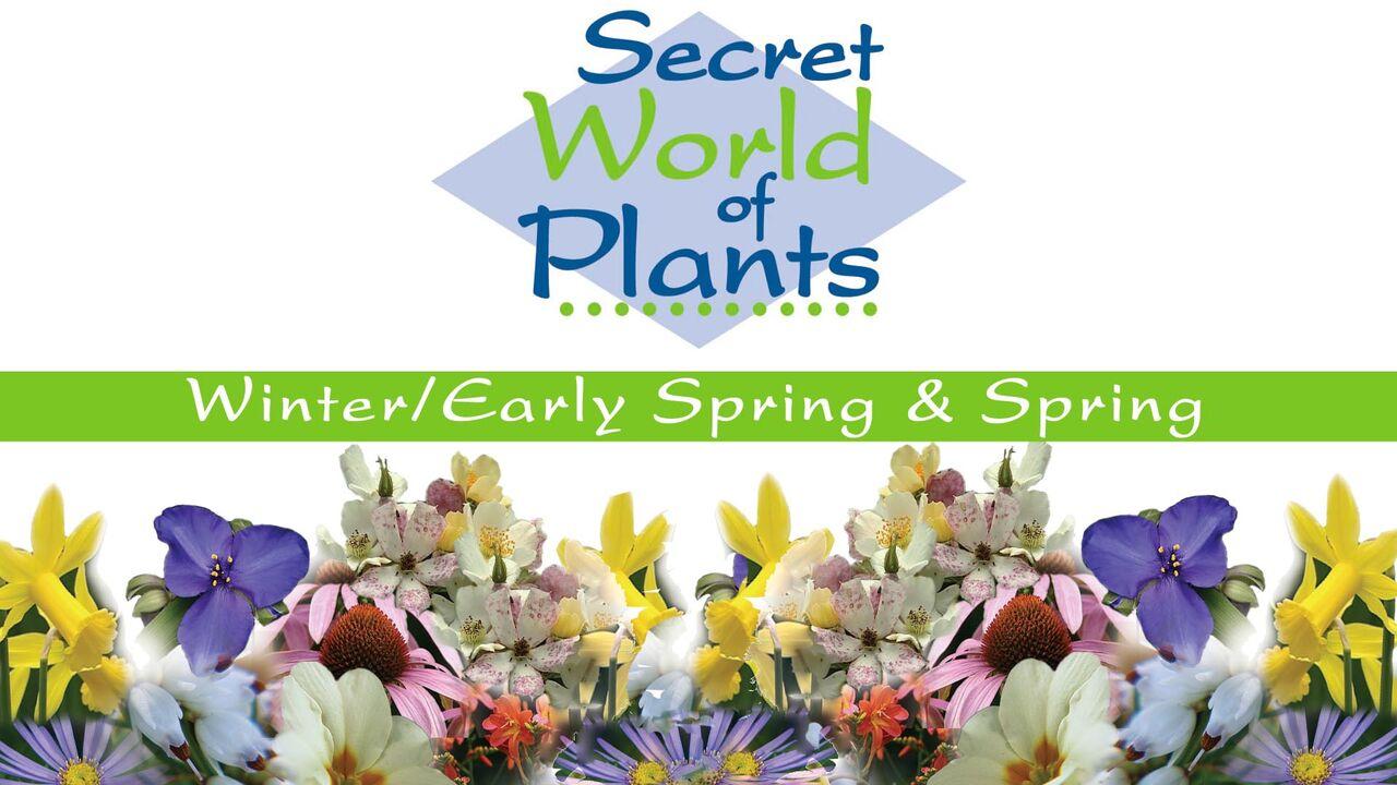 Secret World of Plants -