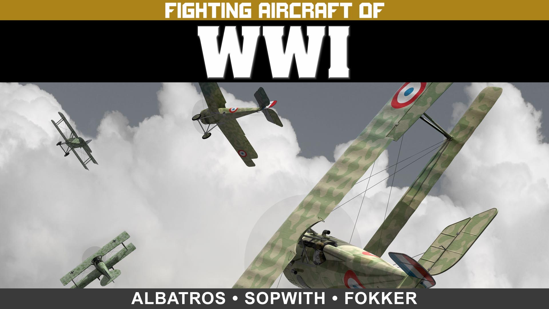 Fighting Aircraft of WWI: Albatros, Sopwith and Fokker -