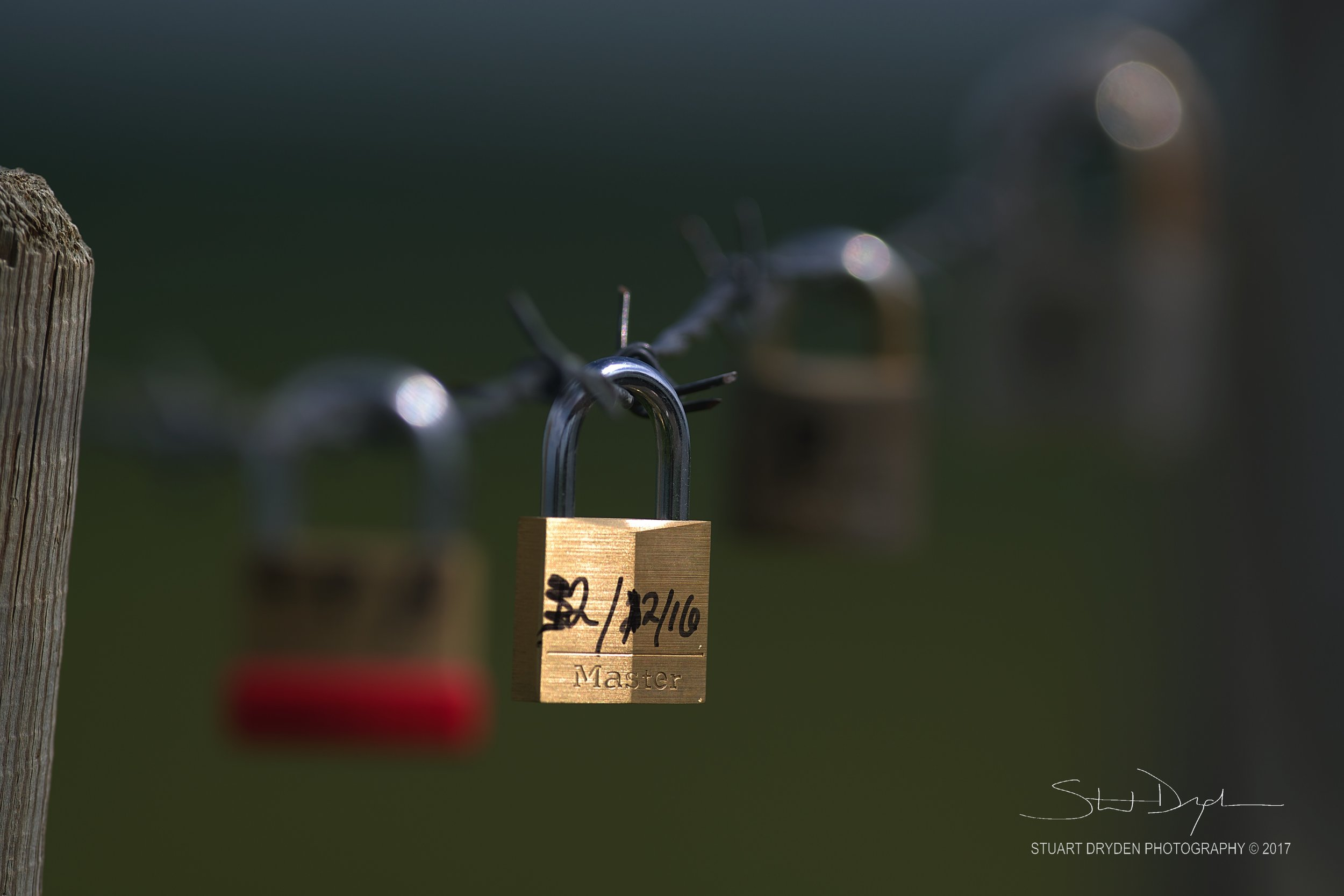 Lucky Locks