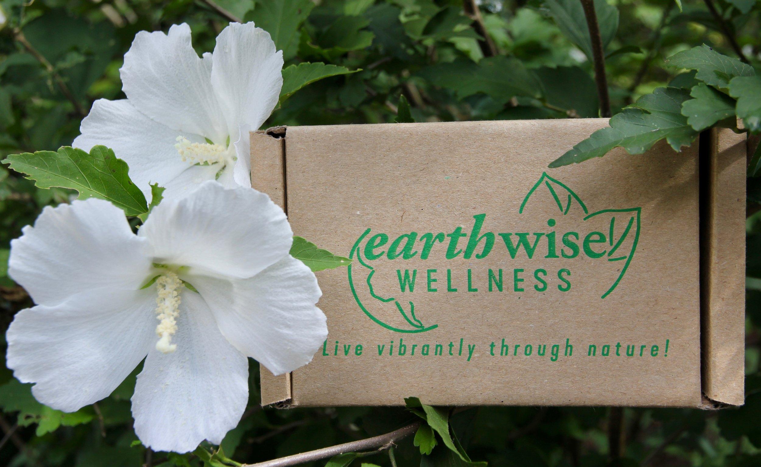 EarthWiseShippingBox