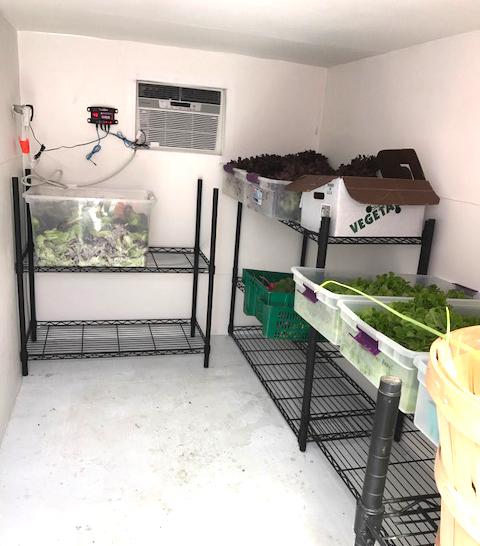 Interior shelving and refrigeration
