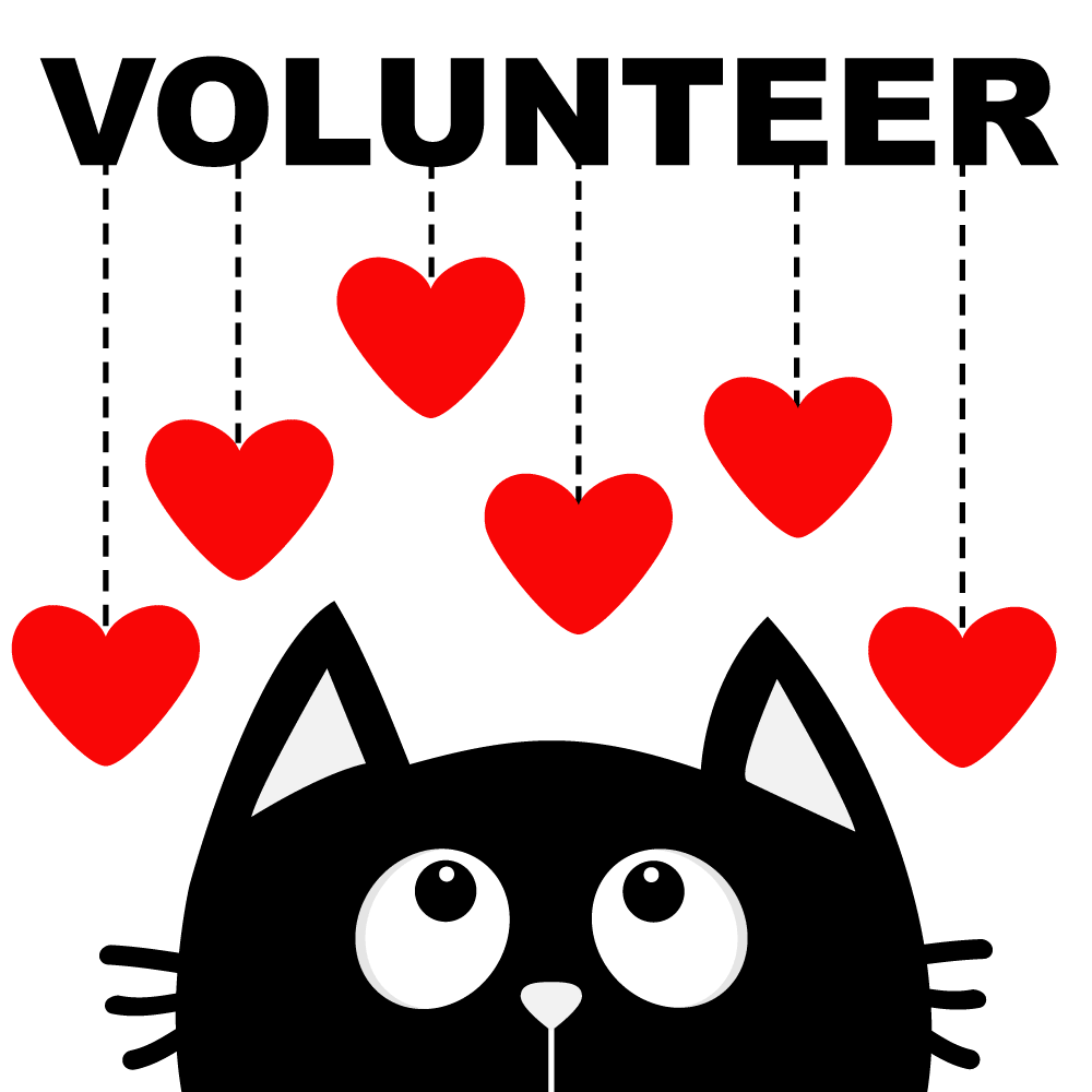 volunteerImage_NBG.png