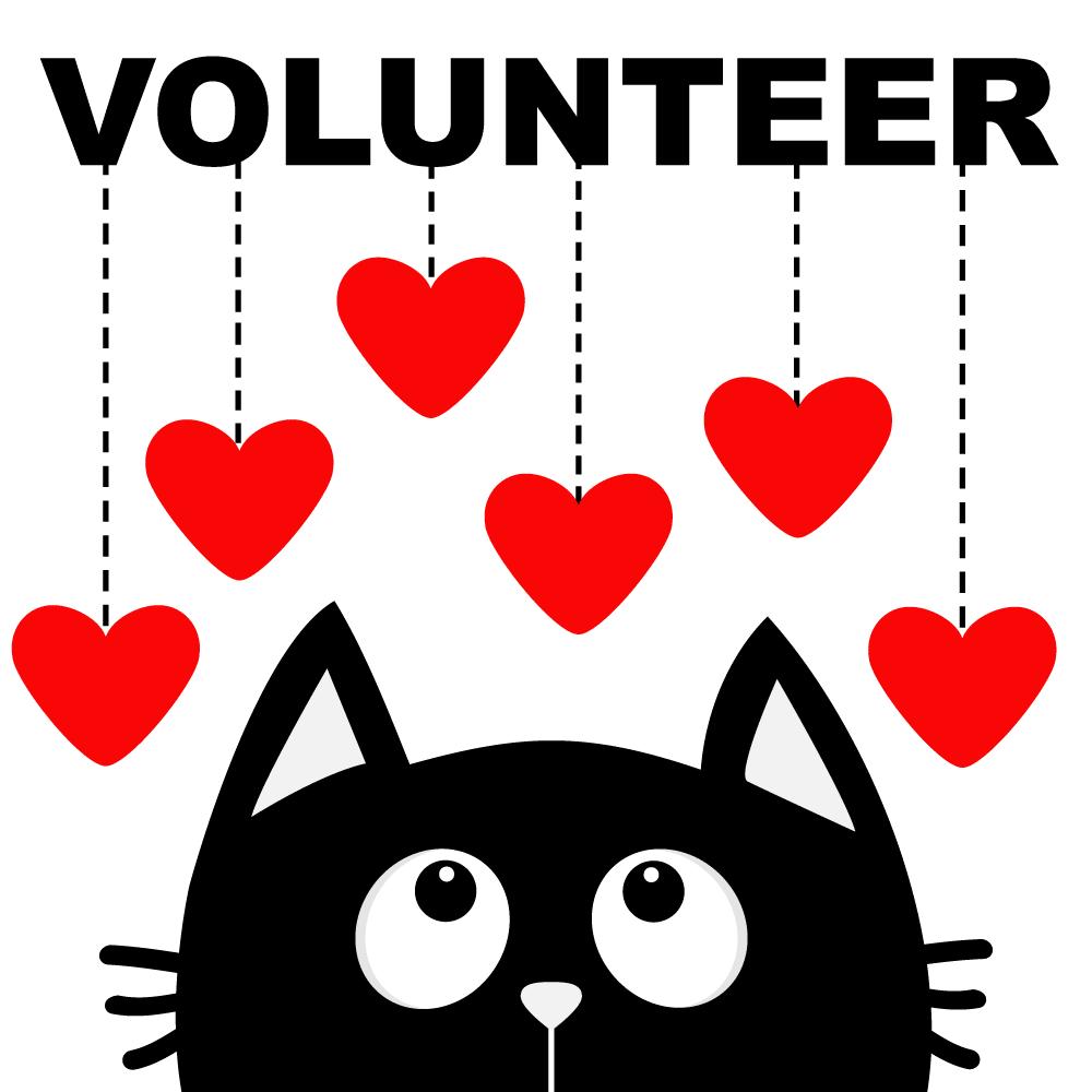 volunteerImage_NBG.png