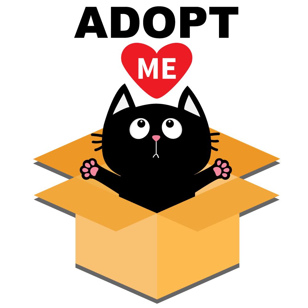 adoptImage_NBG.png