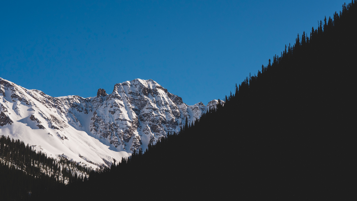 Dark Silhouette of tree-line with Silverton mountains .jpg