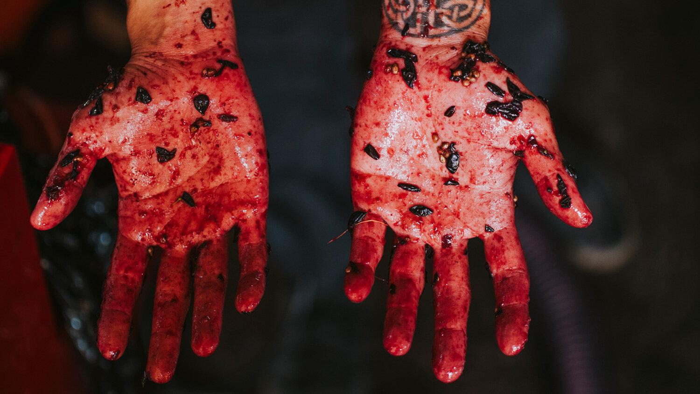 Natural_Wine_Making_Red_Hands.jpg