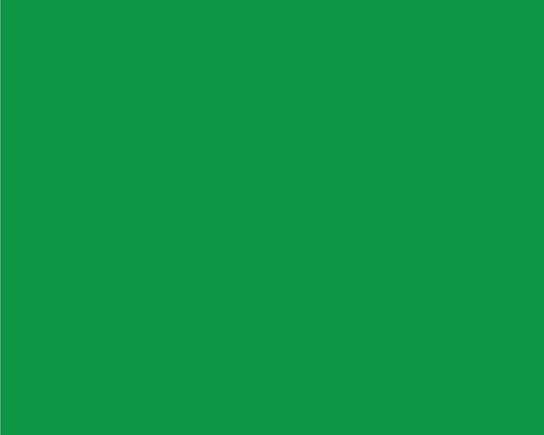 RTS-000-daughter-website_green.jpg