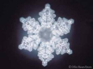 water-crystal-of-truth.jpg
