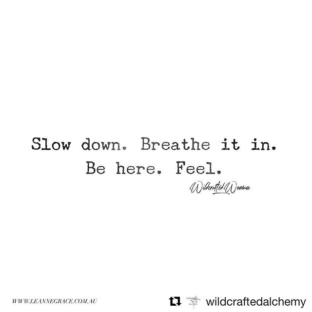 TGI3DW 😍 Slow your roll and soak that shit in.  #Repost @wildcraftedalchemy ・・・ My Friday morning desire for me. For you. Be here. ✌🏼🍂💋 ✨✨✨✨ #3dayweekend #slowdown #beherenow