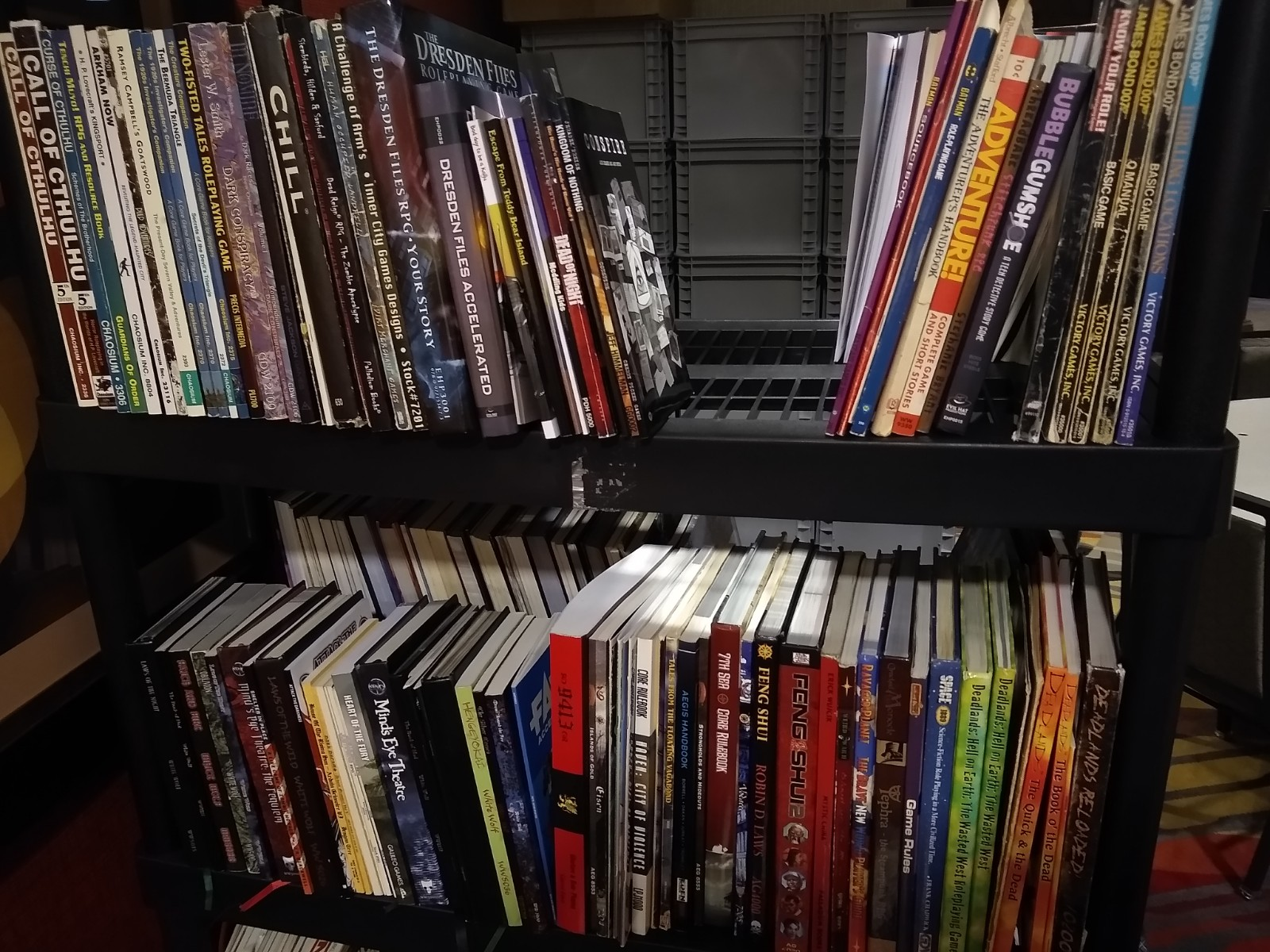 One of the bookshelves with books. Feng Shui anyone? Maybe Call of Cthulu?