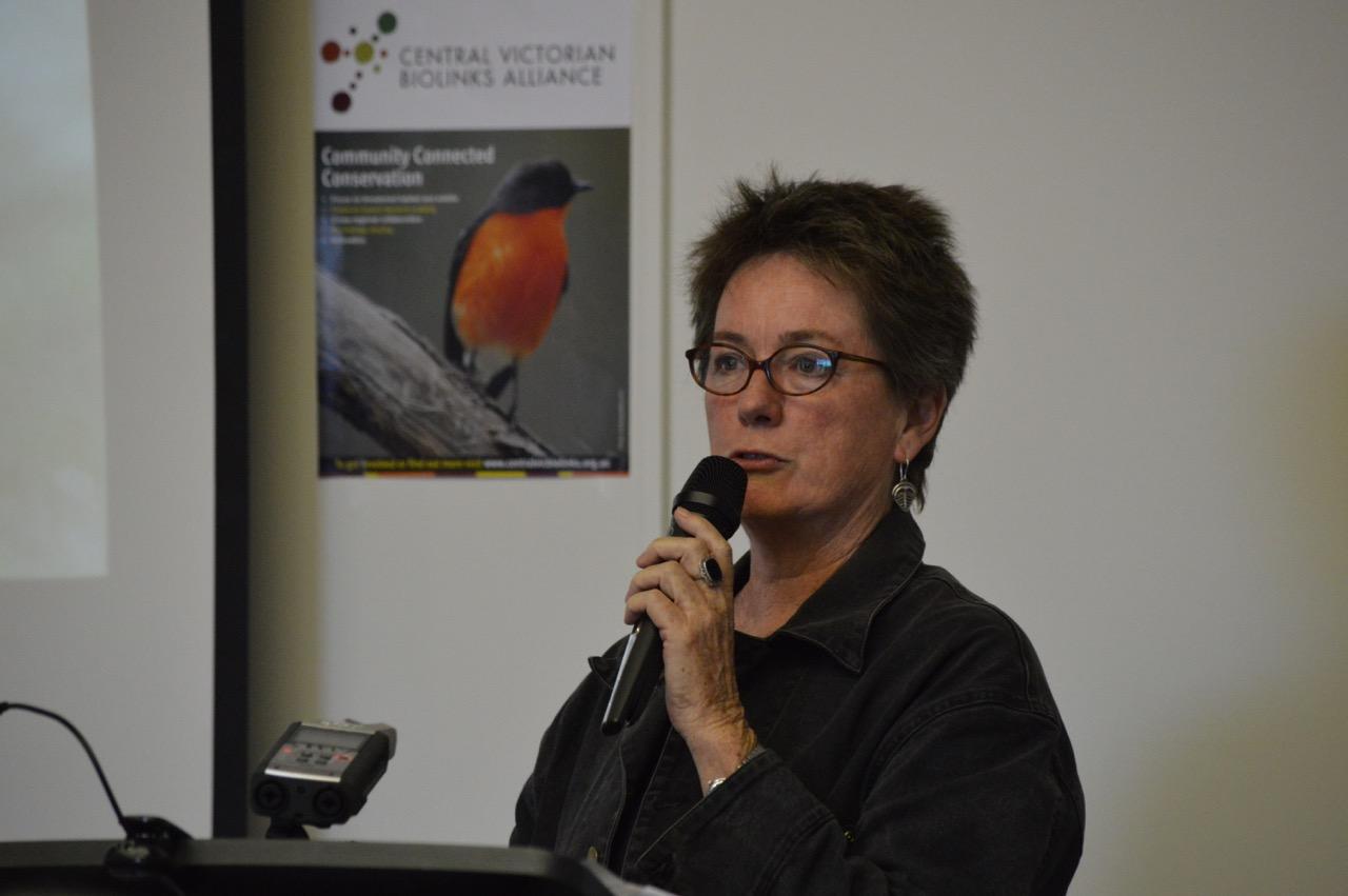 Professor Kate Auty launching CVBA after the Glideways Symposium