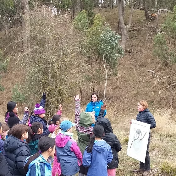 "Students from Camberwell Girls Grammar on school camp, took time out to restore the floodplain by the  Little Coliban River, on a freezing Kyneton morning, this World Environment Day. Brendan from Tylden Landcare taught the girls how to plant with the ""pogo stick"" digger and explained beautifully  how the trees they planted kept that water clean and would be future homes for birds and animals like the Glider Possums. We were so impressed with their interest, enthusiasm, team work and determined digging skills! They give us plenty of reason to hope for the future!  @upper_campaspe_landcare @northcentral_cma  #worldenvironmentday #connectingwithnature #CGGS"