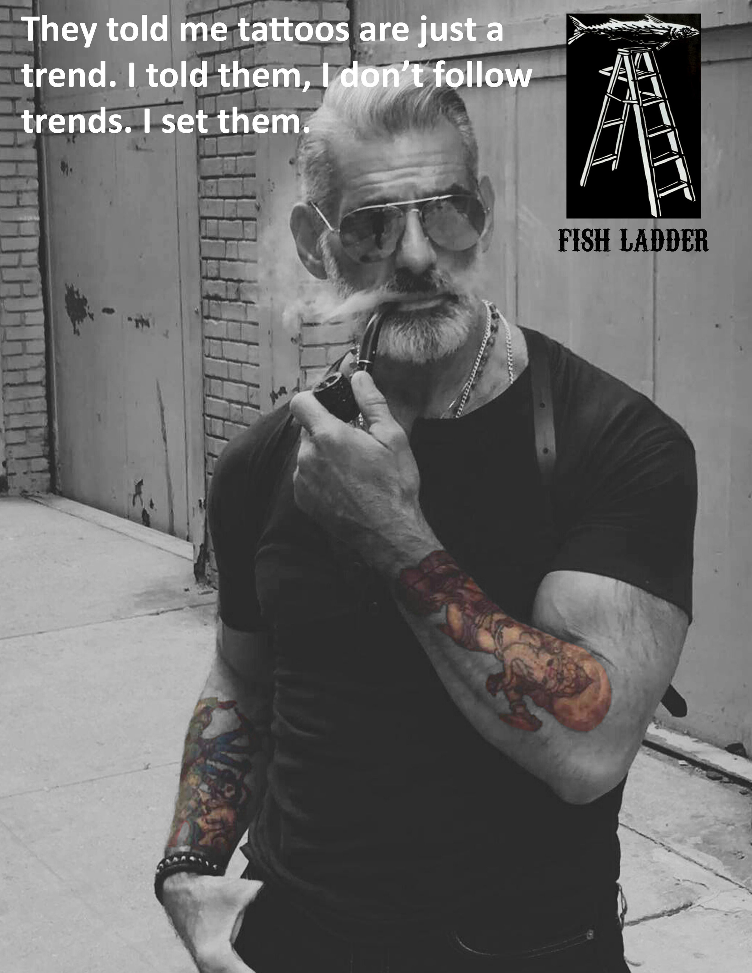 Poster ad - Fish Ladder.