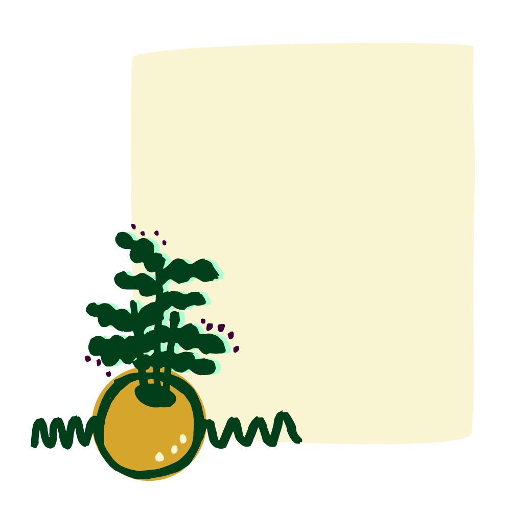 plant-02.jpg