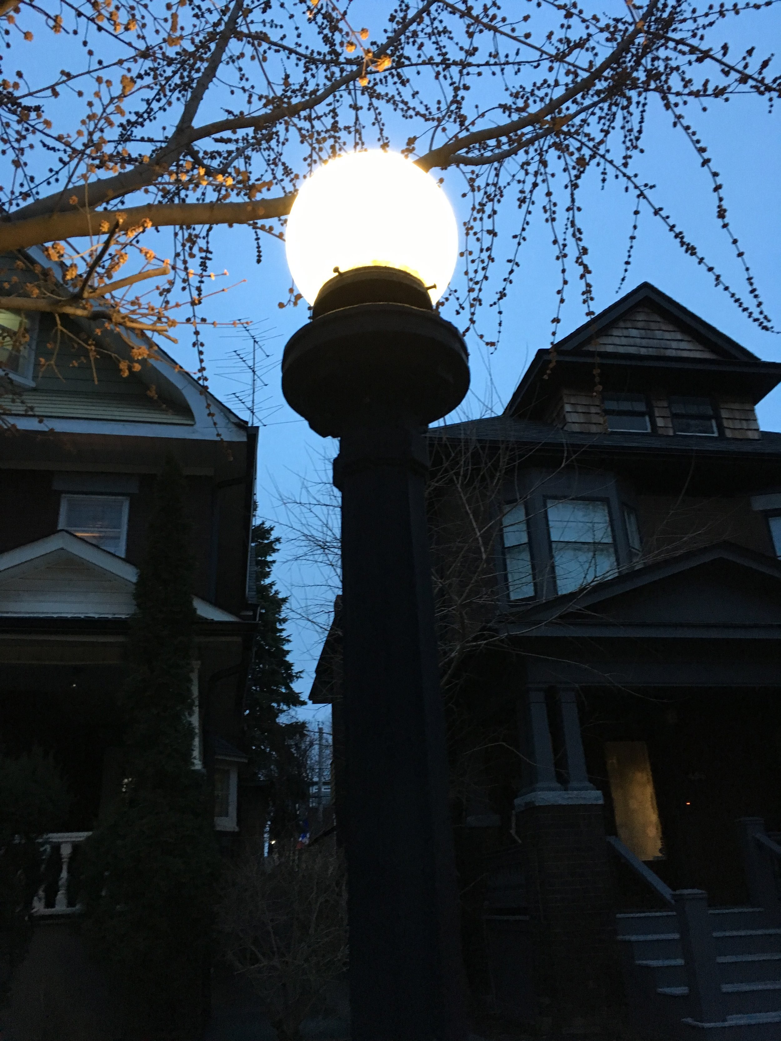 Palmerston Ave.    Located in Toronto's West End, Palmerston is where Eric Kelton, the masquerada Hierarch, lives. With gates on each end and original-style lamplights, Palmerston's stately old homes have mostly been turned into apartments.