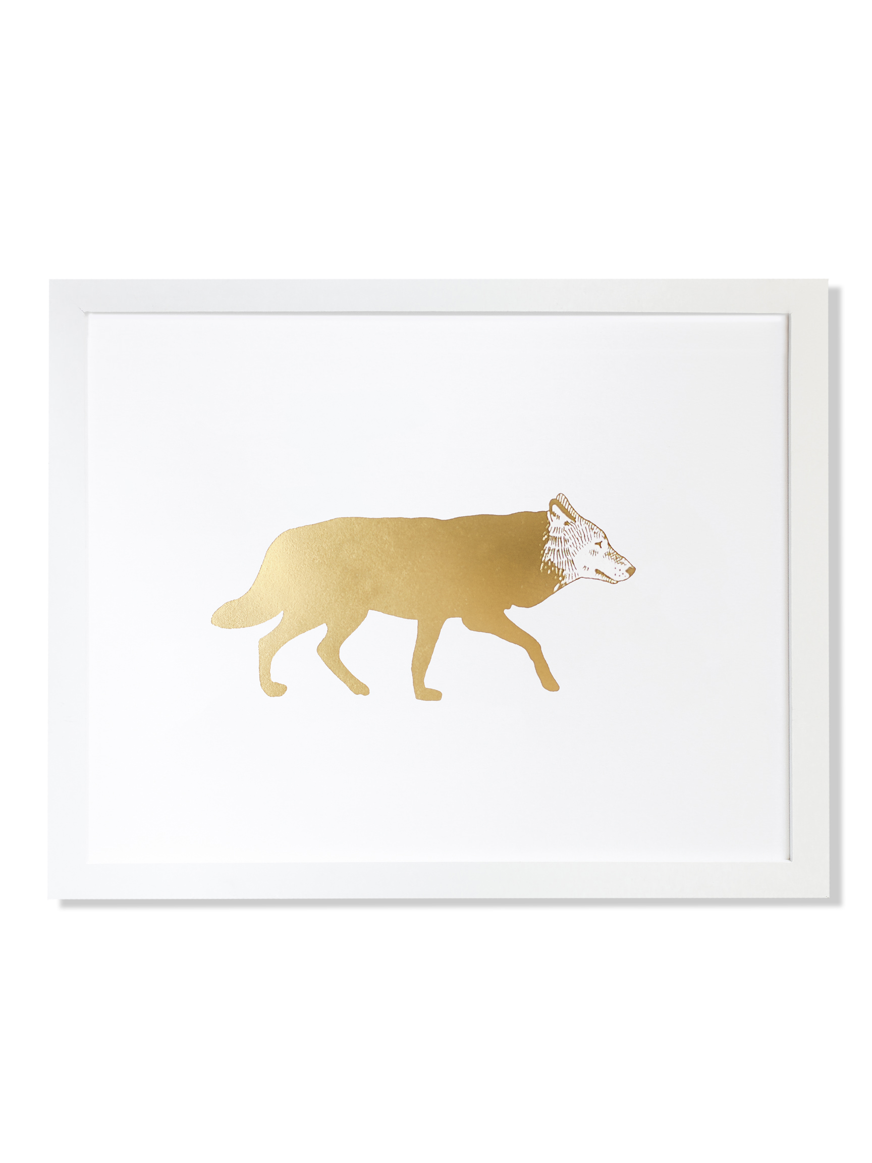 fp018-animal-wolf.jpg