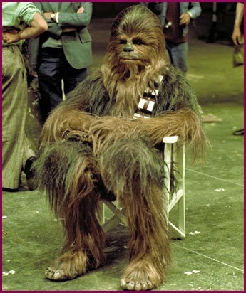 chewbacca+directors+chair.jpg