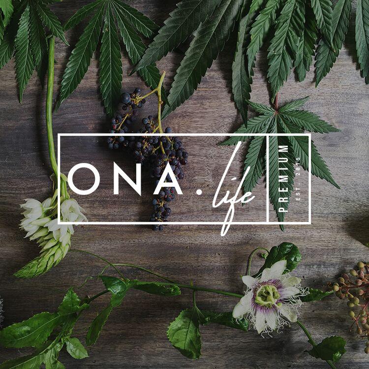 ONA_logo.jpg
