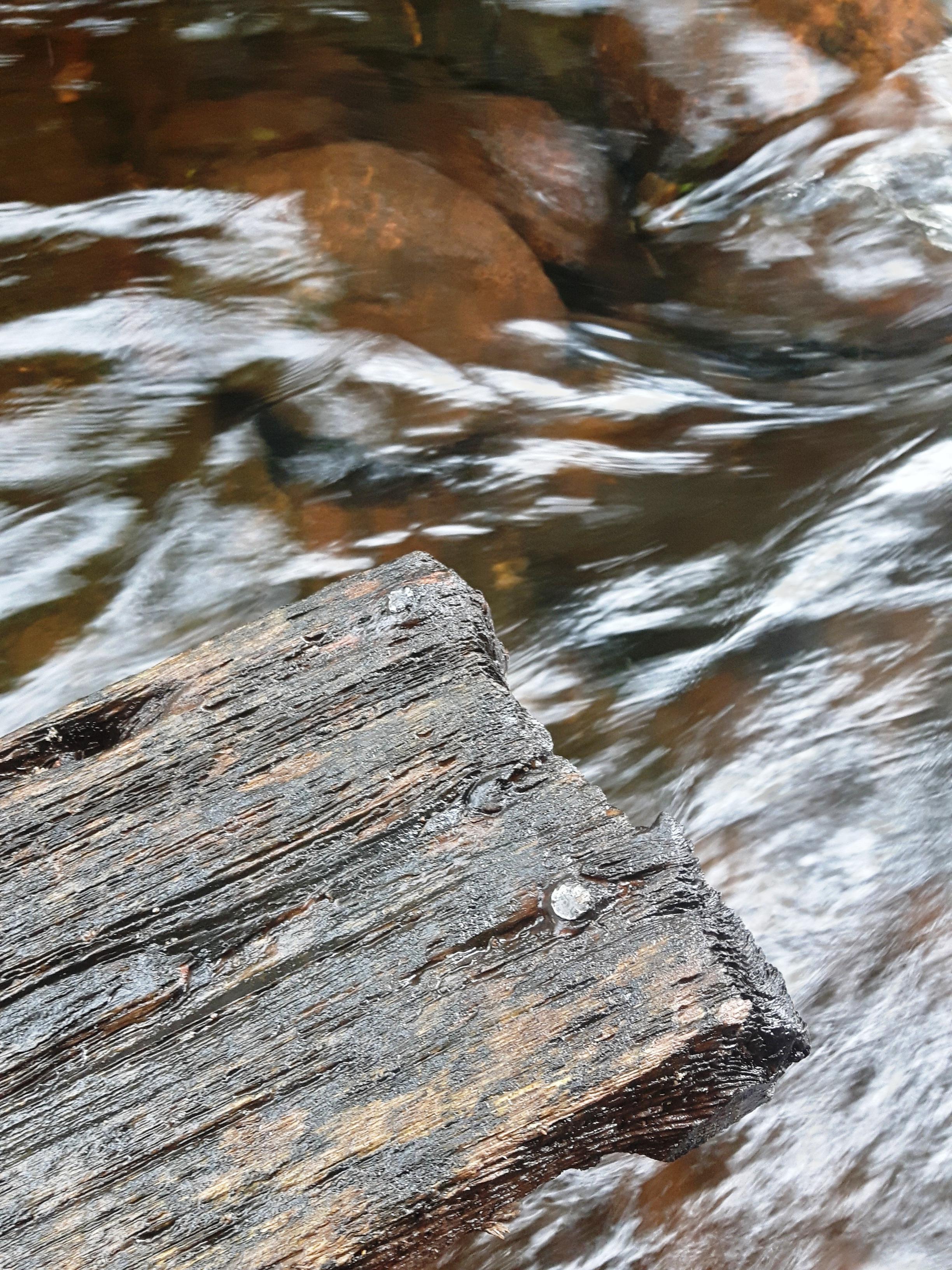 les-bois-d'eau 21.jpg
