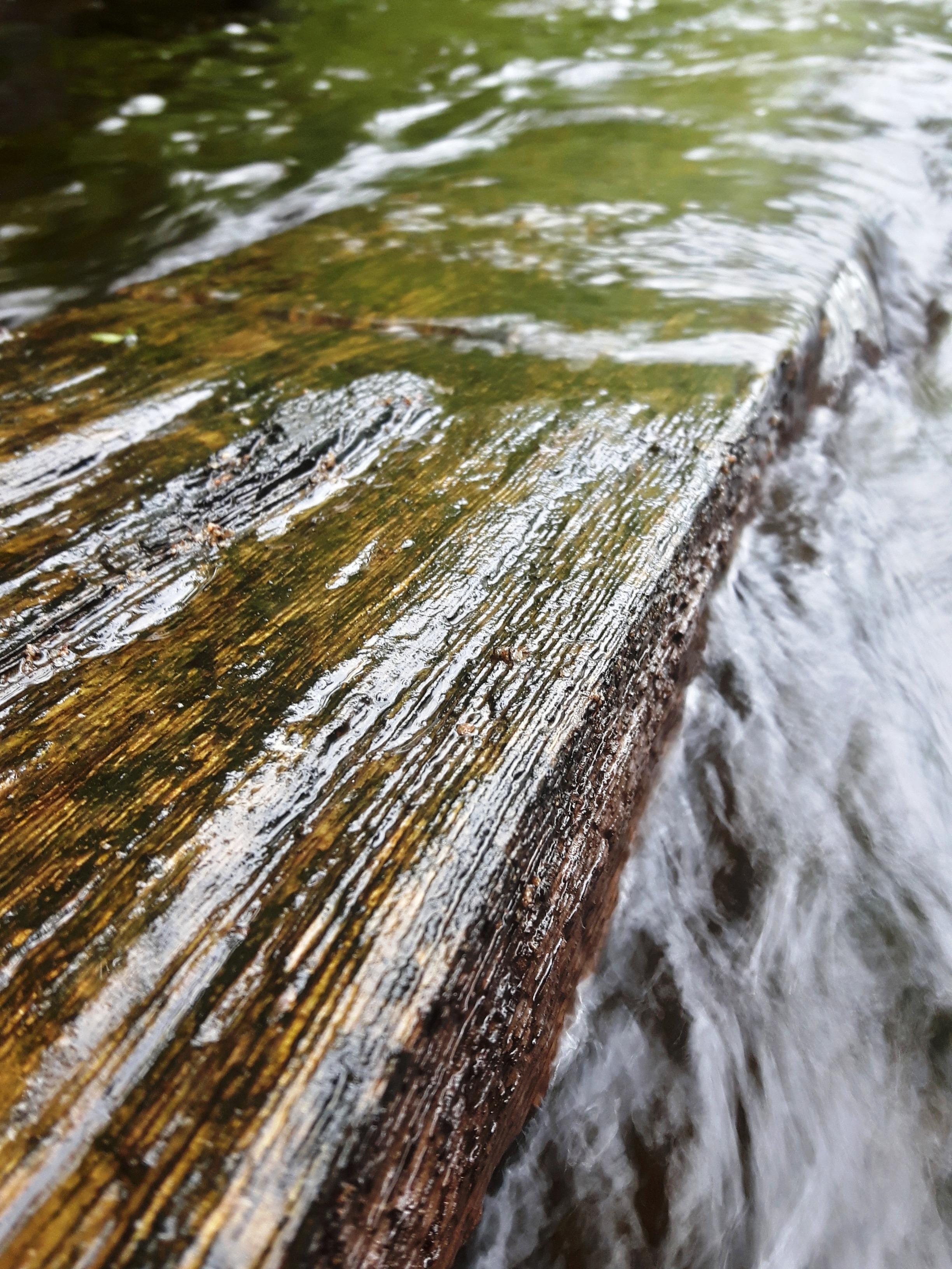 les-bois-d'eau 26.jpg