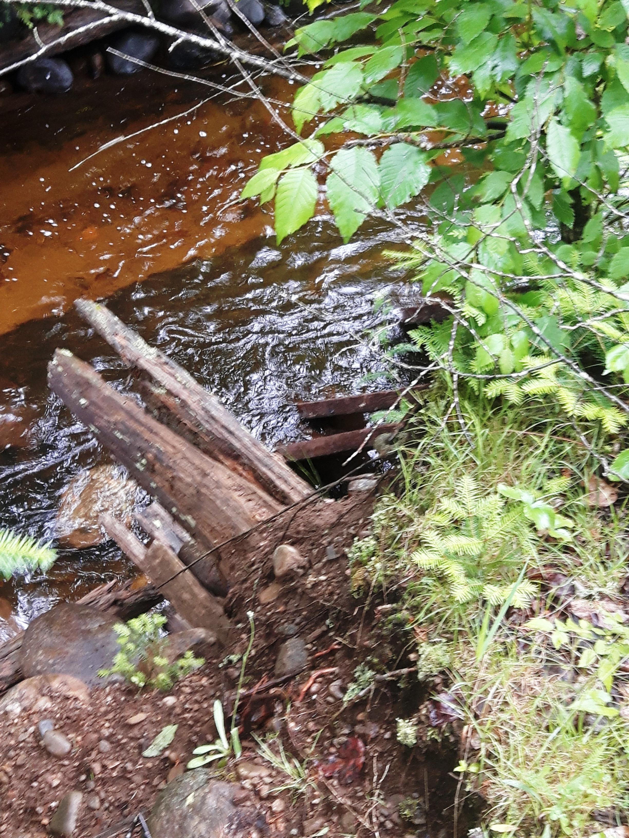 les-bois-d'eau 44.jpg