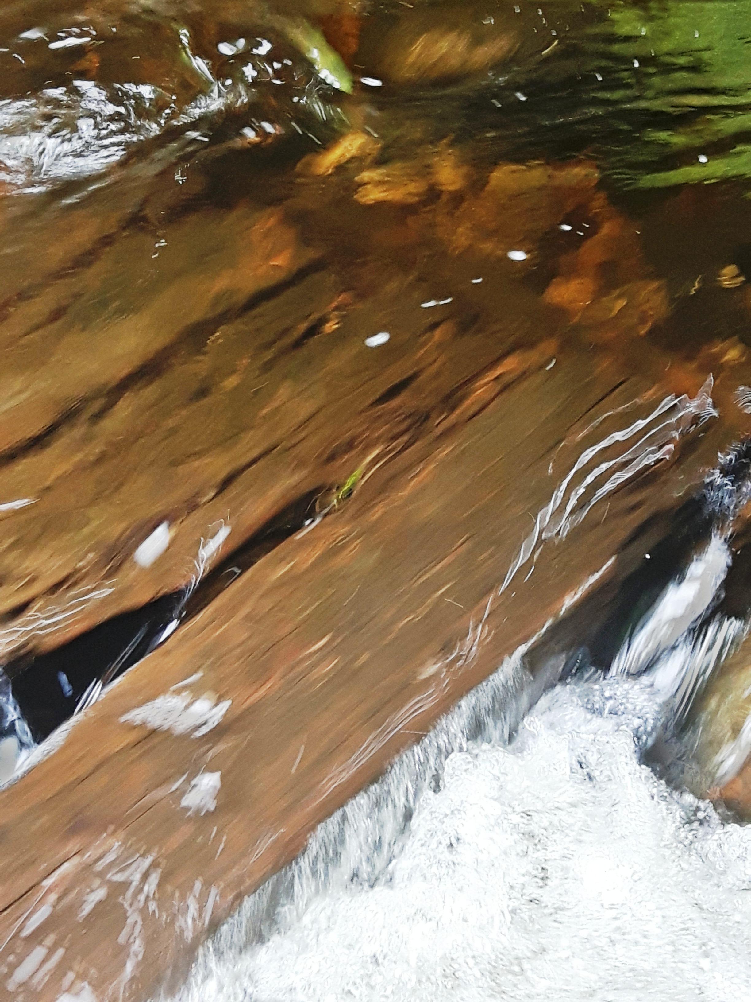 les-bois-d'eau 04.jpg