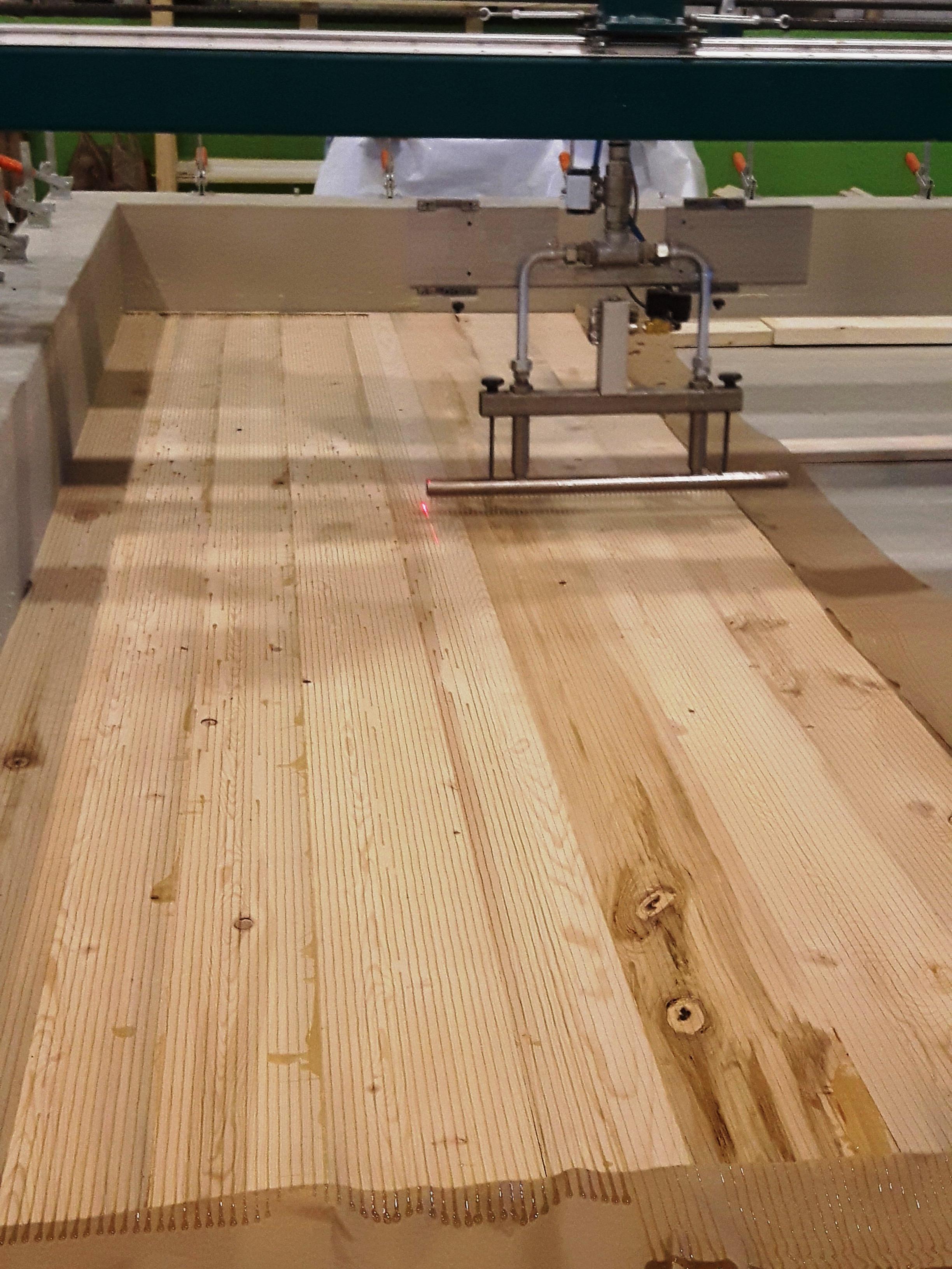 les bois d'eau - CLT 05.jpg