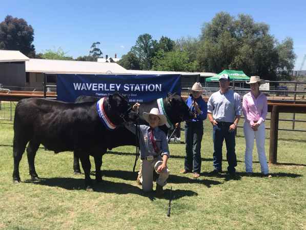 """Winners from the Waverley Station """"School Steer Challenge"""".  Left to right: Champion Steer entered by St Lawrence's Primary School, Coonabarabran; Champion Primary Parade Steer entered by St Joseph's Primary School, Denman; George Crouch, Managing Director of Waverley Station Pty Ltd; Beef Bonanza judge, Lauren Eather."""